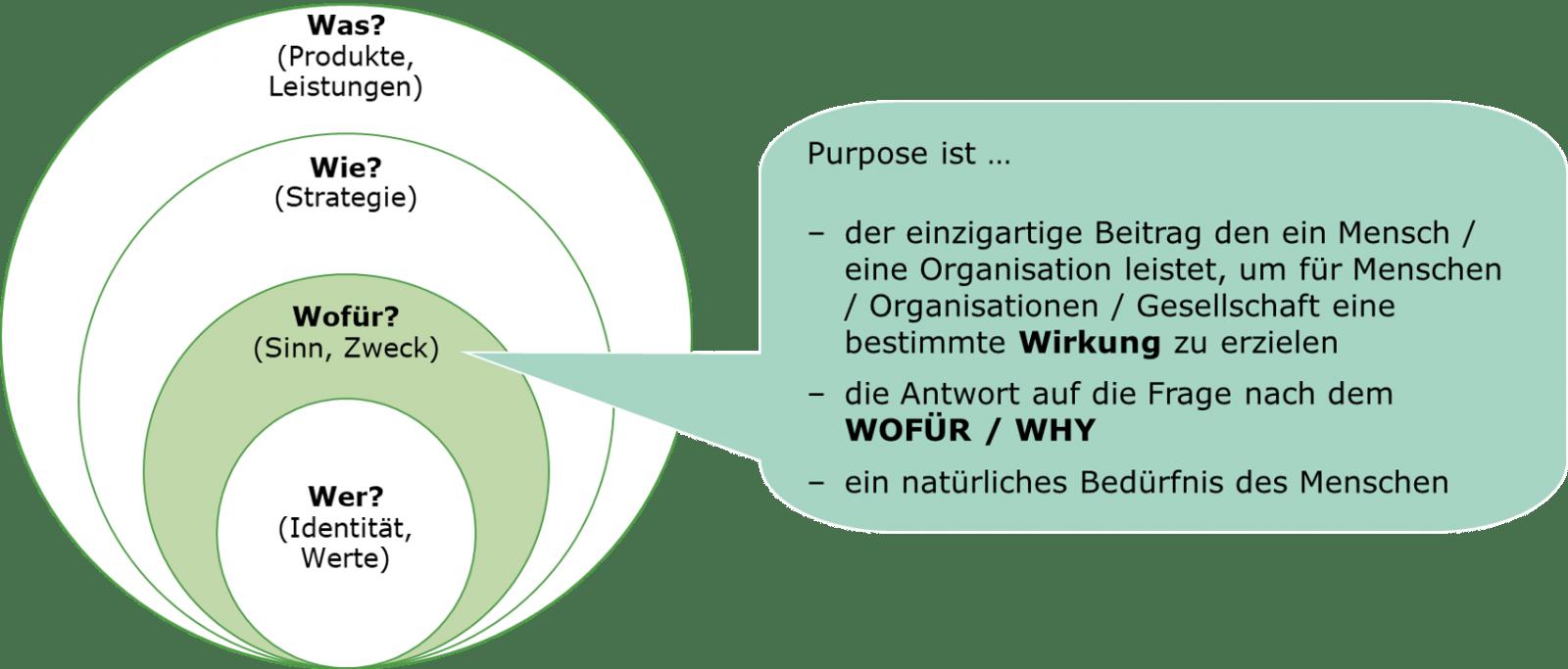 Darstellung des Why-Prozesses